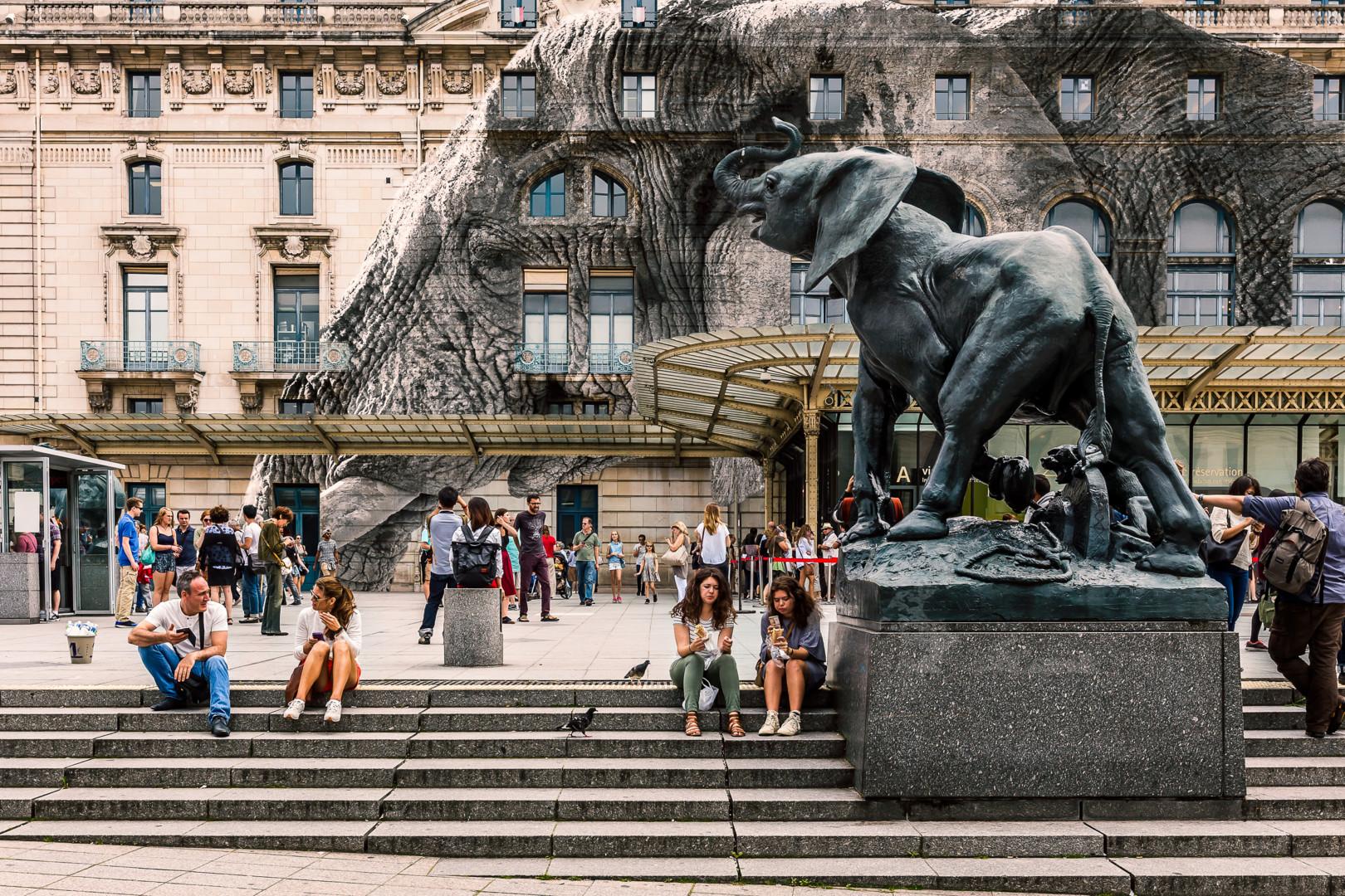 Maxl - Elephant Orsay