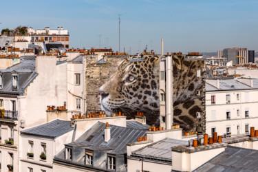 Un léopard à Montmartre