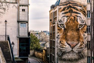 Un tigre en ville
